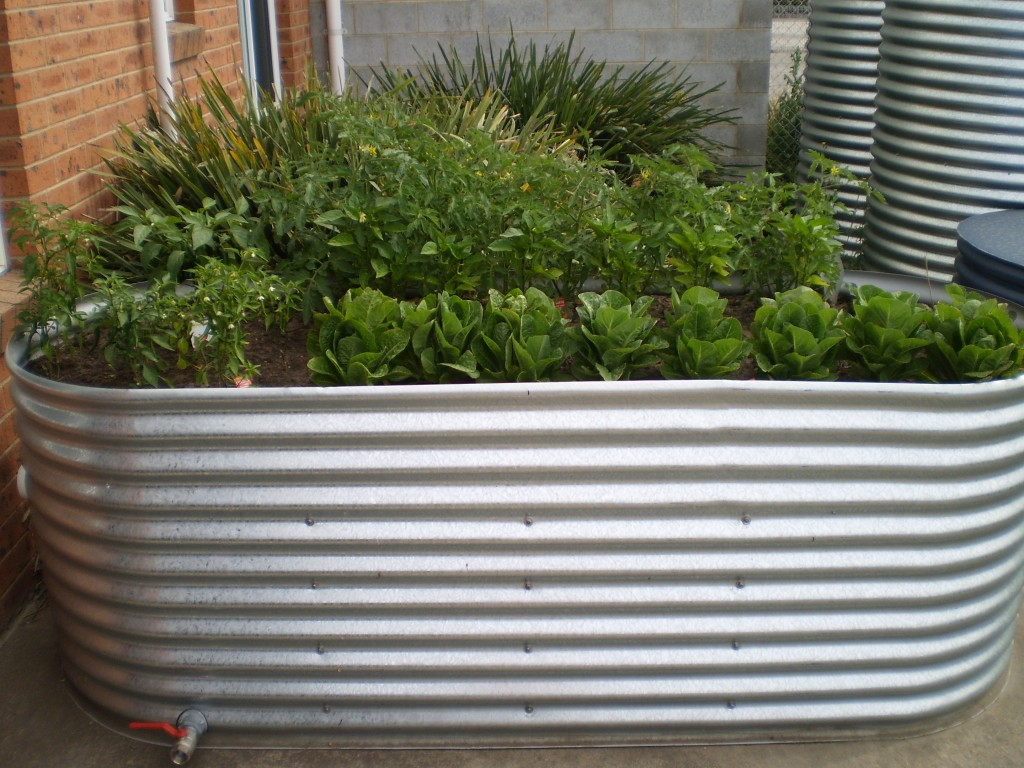 Corrugated Iron Garden Beds Geelong Raised Ballarat